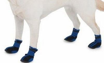 ботинки хаски